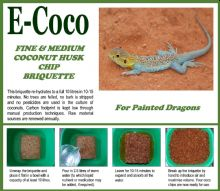 PAINTED DRAGON SUBSTRATE BRIQUETTES